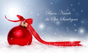 Auguri Di Natale Per La Famiglia.Auguri Di Buon Natale E Felice 2014 Dallo Staff Di Spa Sardegna