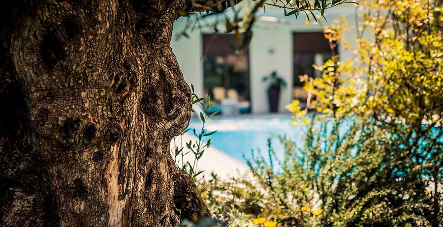 Esterno con piscina all'Hotel Riviera
